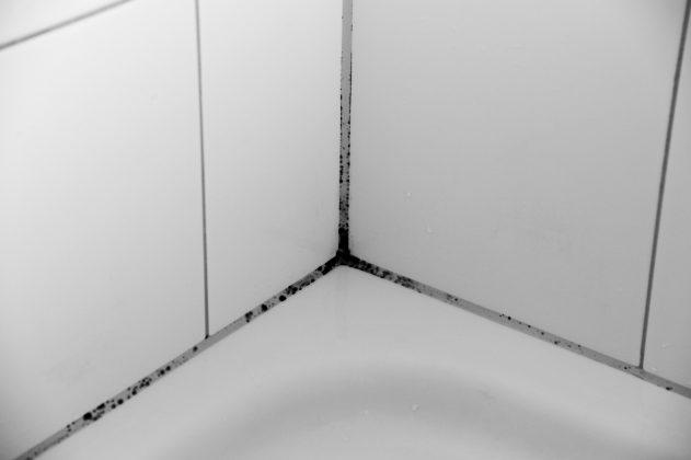 Schimmel op badkamertegels verwijderen - Tips van Tante Kaat