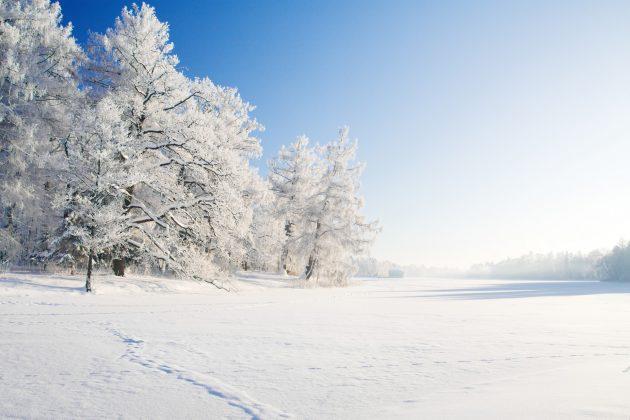 Sneeuw – vloer